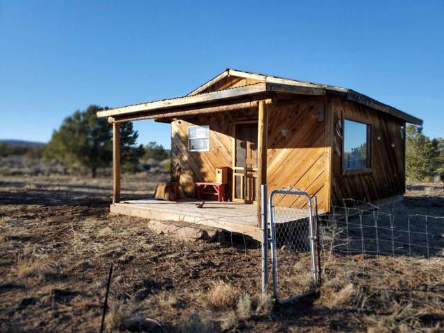 Moon Tree, Tres Piedras, NM 87577 (MLS #106208) :: Angel Fire Real Estate & Land Co.