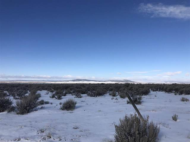 Calle Feliberto, El Prado, NM 87529 (MLS #106215) :: Page Sullivan Group