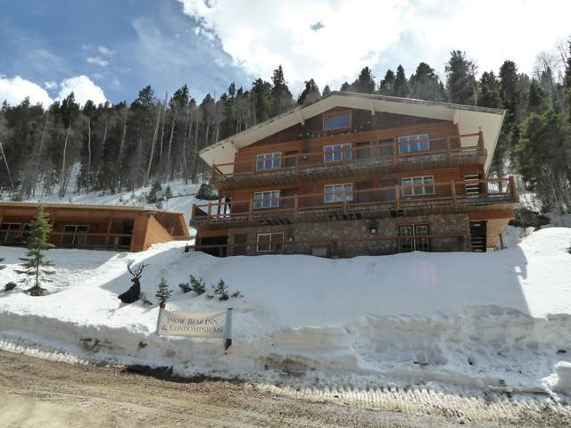 22 Firehouse Road, Taos Ski Valley, NM 87525 (MLS #106223) :: Page Sullivan Group