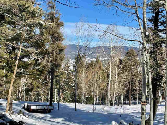 1157 Cochiti Trail, Angel Fire, NM 87710 (MLS #106242) :: Page Sullivan Group