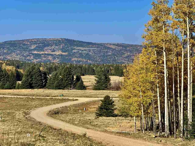 Lot 60 Dancing Bear, Angel Fire, NM 87710 (MLS #106245) :: Page Sullivan Group