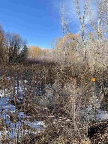 Upper Ranchitos, Taos, NM 87571 (MLS #106254) :: Chisum Realty Group