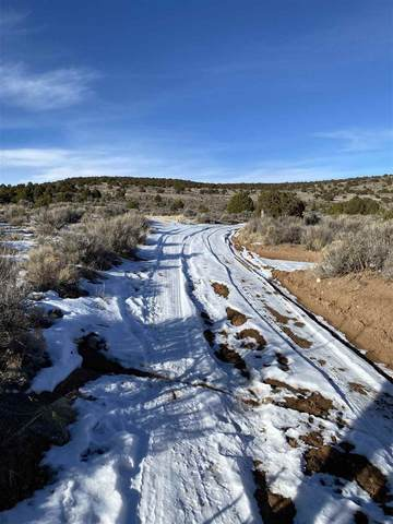 off Usfs 602 And Sr 567, Carson, NM 87517 (MLS #106257) :: Chisum Realty Group