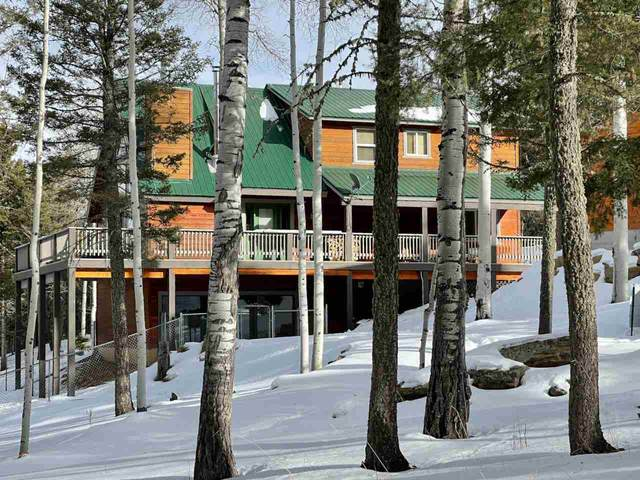 44 Vermejo Circle, Angel Fire, NM 87710 (MLS #106267) :: Page Sullivan Group