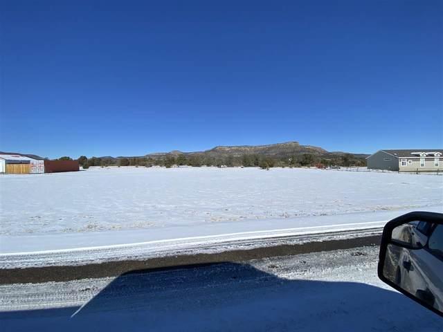 Lambert Hills, Cimarron, NM 87714 (MLS #106281) :: Page Sullivan Group