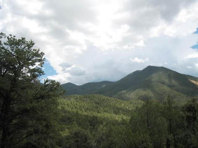 Upper Pinabete Road, Questa, NM 87556 (MLS #106289) :: Chisum Realty Group