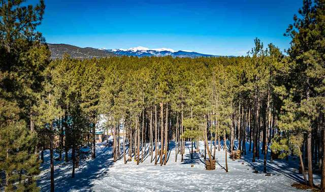 50 Saints Terrace, Angel Fire, NM 87710 (MLS #106296) :: Chisum Realty Group