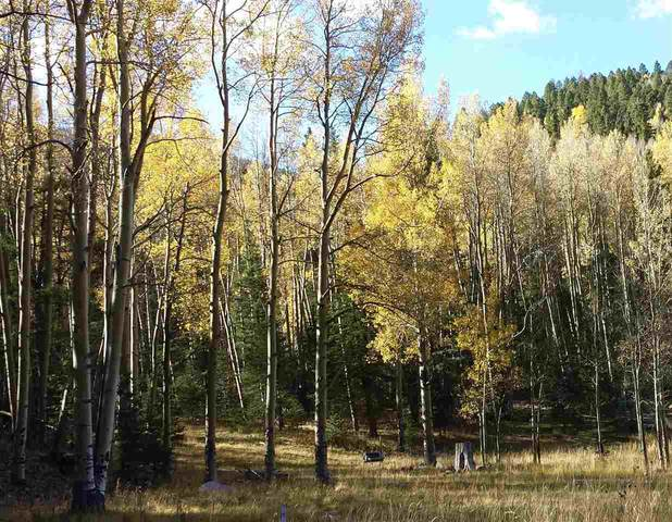 62 Black Copper Canyon, Red River, NM 87557 (MLS #106330) :: Angel Fire Real Estate & Land Co.