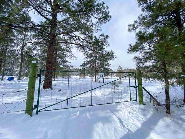 115 Williams Canyon Road Or Mora Co Road A034, Guadalupita, NM 87722 (MLS #106356) :: Angel Fire Real Estate & Land Co.