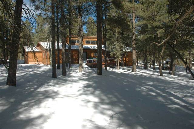 10 Woodlands Dr, Angel Fire, NM 87710 (MLS #106359) :: Chisum Realty Group