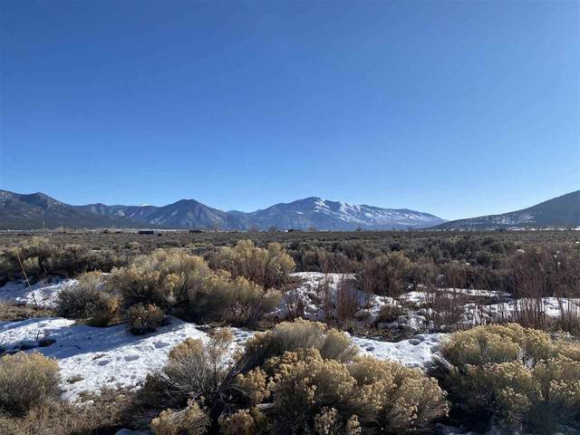 160 Buena Vista Road, Cerro, NM 87519 (MLS #106360) :: Page Sullivan Group