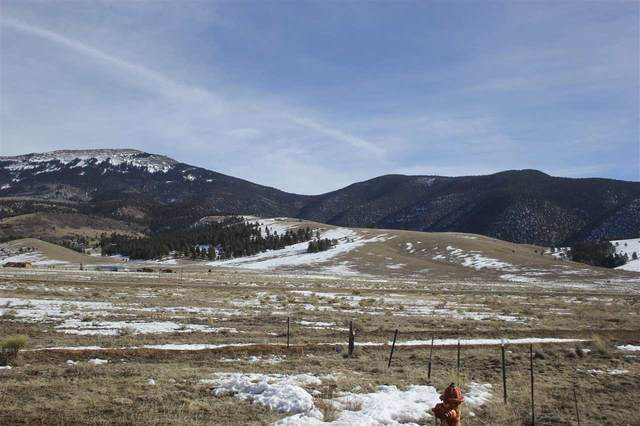 lot 5 Indian Paintbrush, Eagle Nest, NM 87718 (MLS #106388) :: Chisum Realty Group