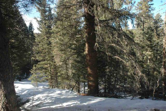 11 Country Club i A, angel fir, NM 87710 (MLS #106406) :: Coldwell Banker Mountain Properties