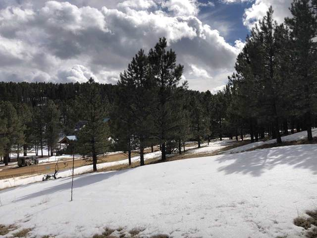 1066 Woodlands Drive, Angel Fire, NM 87710 (MLS #106407) :: Page Sullivan Group