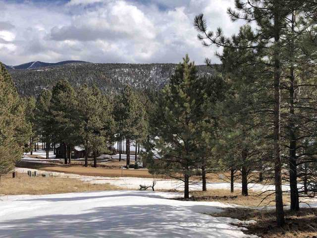 1067 Woodlands Drive, Angel Fire, NM 87710 (MLS #106408) :: Page Sullivan Group