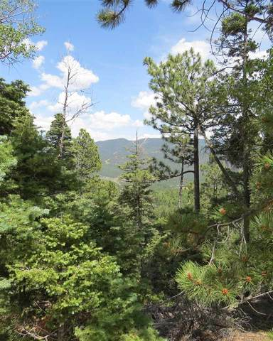 TBD Sierra Blanca Trail Lot 42, Angel Fire, NM 87710 (MLS #106444) :: Angel Fire Real Estate & Land Co.