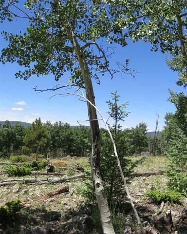 TBD Turkey Feather Lot 172, Angel Fire, NM 87710 (MLS #106466) :: Angel Fire Real Estate & Land Co.