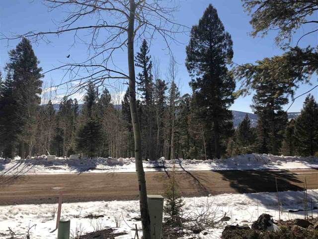 Panorama Way, Angel Fire, NM 87710 (MLS #106481) :: Angel Fire Real Estate & Land Co.