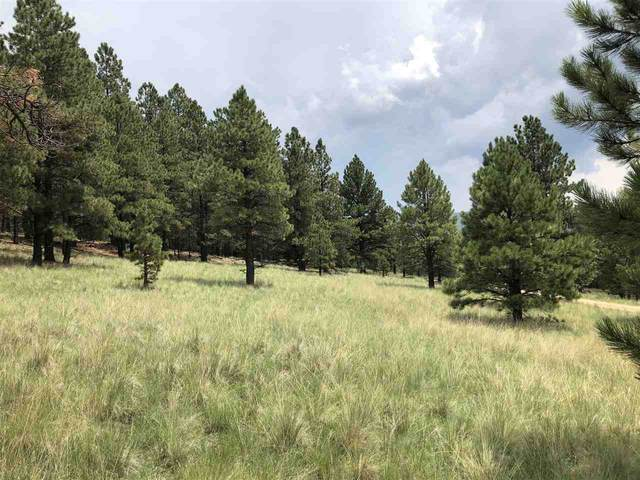 tbd Mora Ranch Road, Black Lake, NM 87722 (MLS #106496) :: Page Sullivan Group