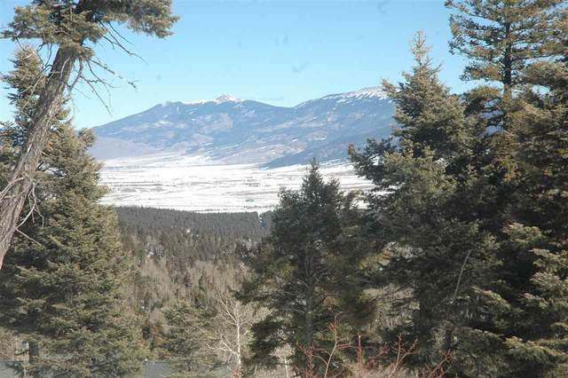 lot 110 Zia Rd, Angel Fie, NM 87710 (MLS #106508) :: Page Sullivan Group