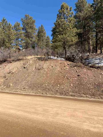 96 Back Basin Road, Angel Fire, NM 87710 (MLS #106523) :: Angel Fire Real Estate & Land Co.