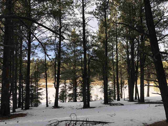 1136 Spy Glass Road, Angel Fire, NM 87710 (MLS #106530) :: Page Sullivan Group
