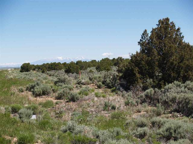 Tract A4 Quintana Road, Questa, NM 87556 (MLS #106546) :: Chisum Realty Group