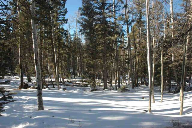215 Taos Dr, Angel Fire, NM 87710 (MLS #106547) :: Page Sullivan Group