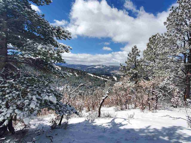 Lot 215 Peak Place, Angel Fire, NM 87710 (MLS #106581) :: Angel Fire Real Estate & Land Co.