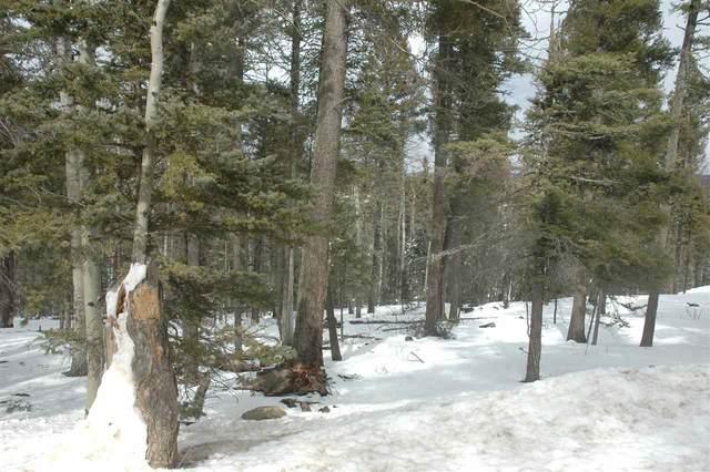 819 San Felipie Cir, Angel Fire, NM 87710 (MLS #106599) :: Angel Fire Real Estate & Land Co.