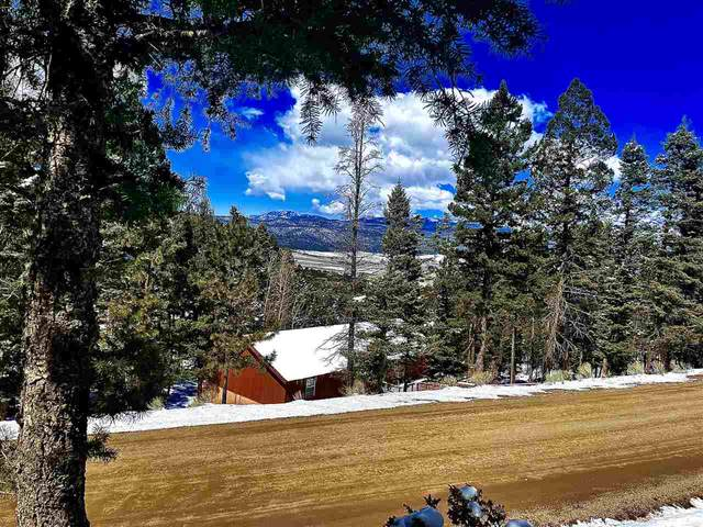 Lot 150 Back Basin Rd, Angel Fire, NM 87710 (MLS #106613) :: Chisum Realty Group