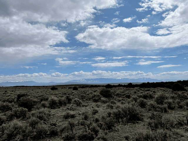 80 acres Tres Piedras, Tres Piedras, NM 87577 (MLS #106660) :: Page Sullivan Group