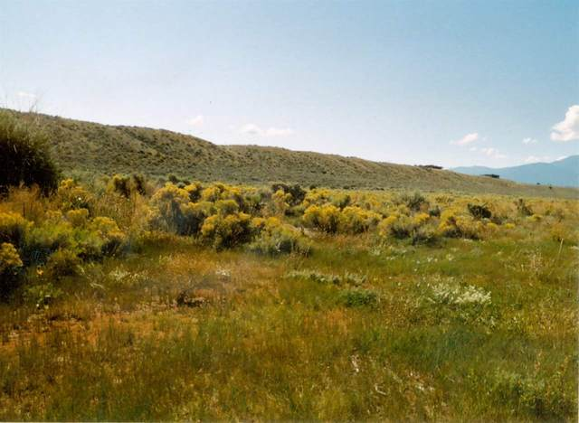 Blueberry Hill Road, El Prado, NM 87529 (MLS #106663) :: Angel Fire Real Estate & Land Co.