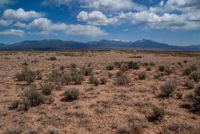 Lot 2 Bald Eagle Subdivision, El Prado, NM 87529 (MLS #106668) :: Chisum Realty Group