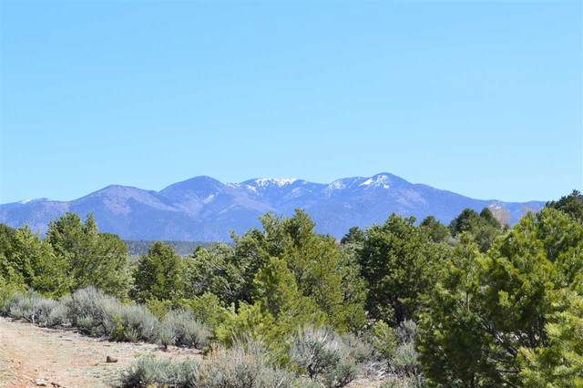 off Tres Lomas Rd, Arroyo Hondo, NM 87513 (MLS #106683) :: Page Sullivan Group