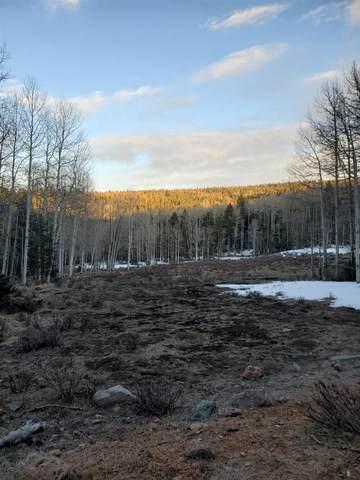 Lot 66A B Mertz Pl, Angel Fire, NM 87710 (MLS #106686) :: Page Sullivan Group