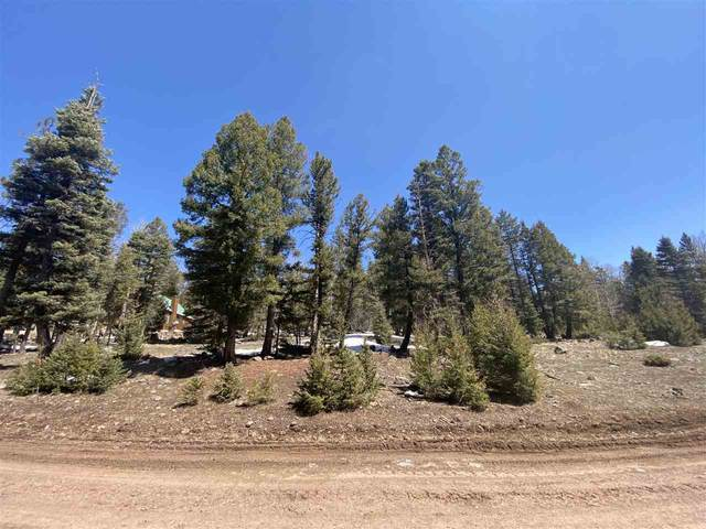 Lot 1329 Skyview Way, Angel Fire, NM 87710 (MLS #106689) :: Angel Fire Real Estate & Land Co.