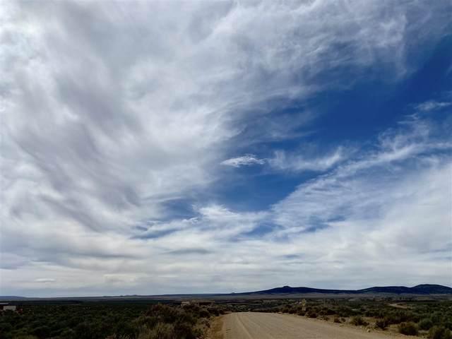 0 Tune Drive, El Prado, NM 87529 (MLS #106690) :: Page Sullivan Group