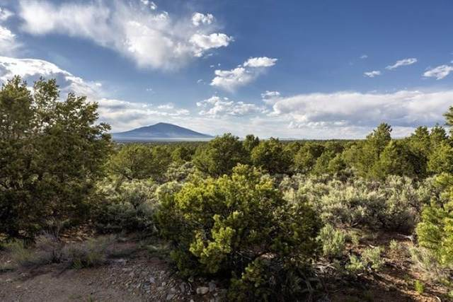 00 Honeyfarm Rd, Questa, NM 87556 (MLS #106697) :: Chisum Realty Group