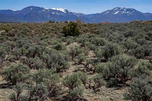 Coyote Loop, Arroyo Hondo, NM 87513 (MLS #106700) :: Chisum Realty Group