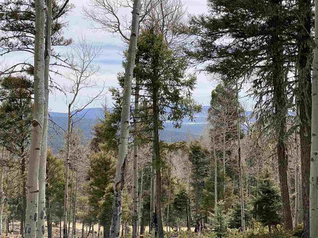 Lot 90 Zia Rd, Angel Fire, NM 87710 (MLS #106713) :: Chisum Realty Group