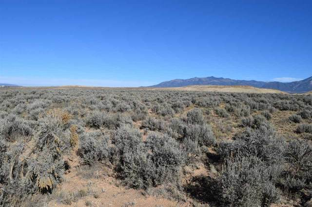 Sugar Lane Tract 1, El Prado, NM 87529 (MLS #106717) :: Chisum Realty Group