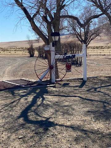 13 miles SE Nm Hwy 193, Raton, NM 87740 (MLS #106726) :: Page Sullivan Group
