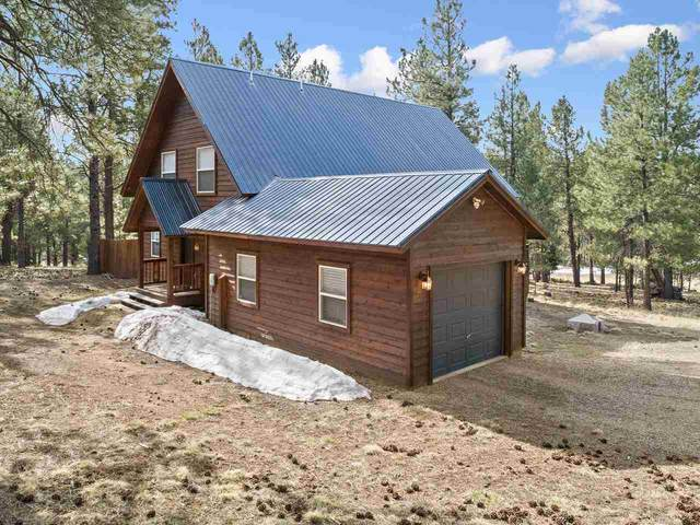 31 Quivera Rd, Angel Fire, NM 87710 (MLS #106727) :: Chisum Realty Group