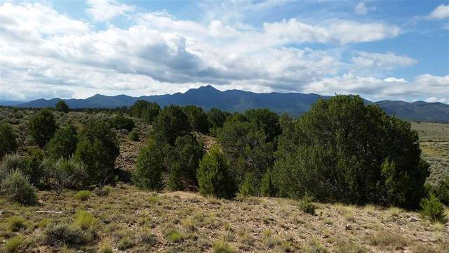 pt of Lot 15 Rahill Adams Road, Ranchos de Taos, NM 87571 (MLS #106735) :: Chisum Realty Group