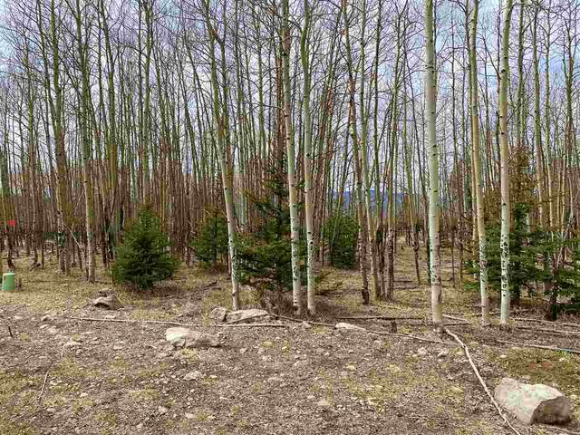Lot 181 El Camino Real, Angel Fire, NM 87710 (MLS #106736) :: Chisum Realty Group
