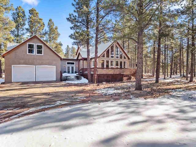 46 Susan Lane, Black Lake, NM 87710 (MLS #106745) :: Angel Fire Real Estate & Land Co.