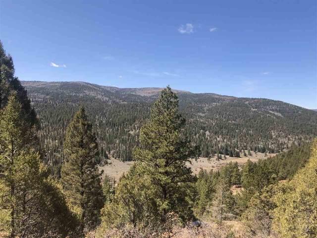52 Los Clanes, Taos, NM 87571 (MLS #106788) :: Berkshire Hathaway Home Services