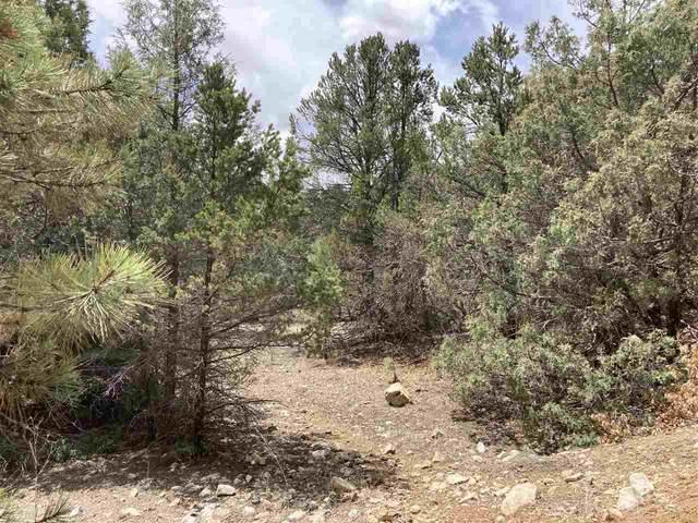 Lot 8 Deer Mesa, Valdez, NM 87571 (MLS #106813) :: Coldwell Banker Mountain Properties