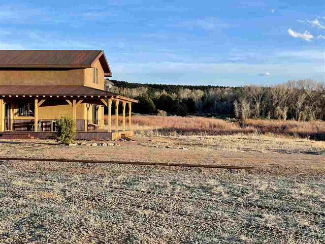 48 B Hondo Seco Rd, Arroyo Hondo, NM 87513 (MLS #106814) :: Angel Fire Real Estate & Land Co.